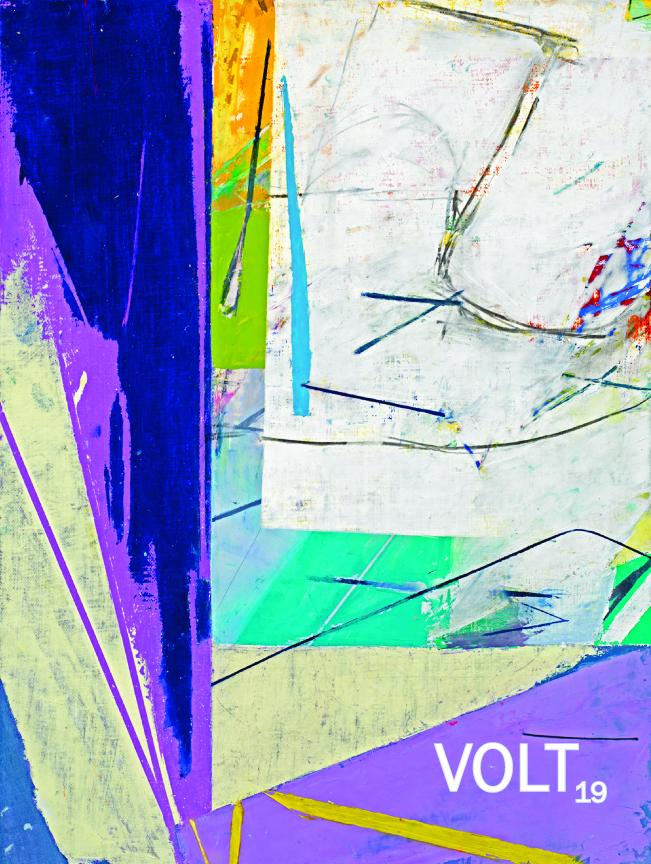 Volt 19 cover 0401
